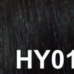 #HY01