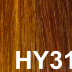 #HY31