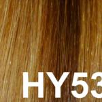 #HY53