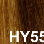#HY55